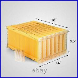 7Pcs Auto Run Honey Beehive Frames Bee Comb Hive Frames For Beehive Box House UK