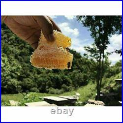 7pcs Upgraded Free Flow Honey Beehive Frames + Beekeeping Brood Cedarwood Box UK
