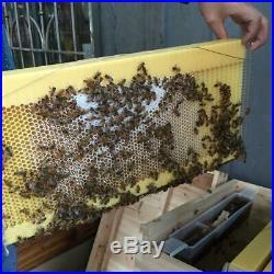 Auto Flow Beehive Frame Kit Raw Frame Honey Beekeeping Beehive Hive Frame+7 Tube