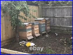 Bee Hives With Bees