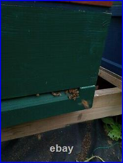 National Bee Hive with colony of Bees