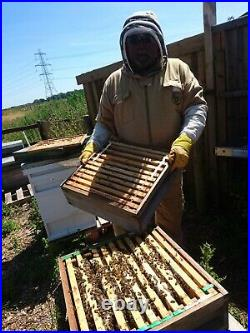 National Bee hives for sale, used but matured and working condition