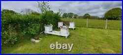 National Beehive, complete with Italian Buckfast Honey Bees x4