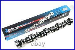 TSP Torquer V2 232/234.600/. 600 112 LSA Camshaft Kit PAC 1219 Beehive Springs