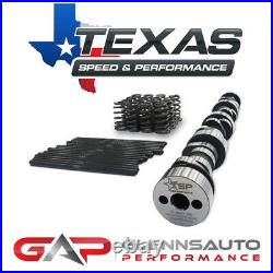 Texas Speed (TSP) Torquer V2 Cam Kit with Beehive Springs 232/234.600/. 600