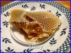 Topbar Beehive