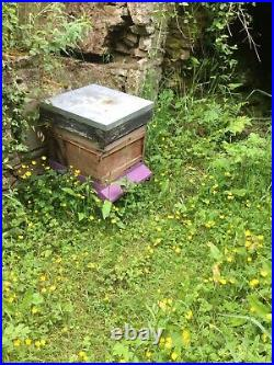 Used bee hives